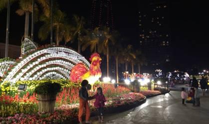 Ngoài ra đường hoa còn được trang trí trước HĐND TP Đà Nẵng cũ và ở các địa điểm dọc vỉa hè phía tây đường Bạch Đằng, hai bên Cầu Rồng cho du khách tham quan chụp ảnh. Ảnh Tùng Anh