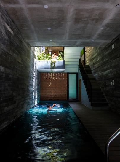 Trong ngôi nhà không chỉ được bố trí vườn hoa, cây xanh mà còn có cả một bể bơi dài 9m ngay dưới tầng 1.